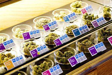 1cannabismass