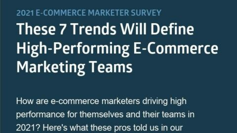Ecommerce Marketing Infographic