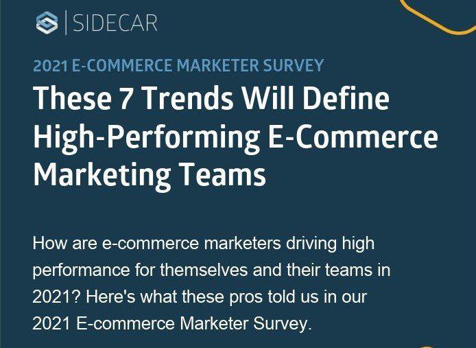 Ecommerce Marketing Infographic