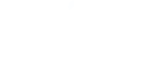Retail Strategy & Planning Series